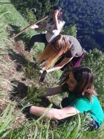 Concursul National ecOprovocarea - elevi la plantare (2)