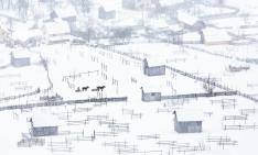 sorin-onisor-iarna-in-bucovina-13