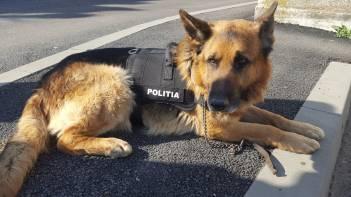ziua_politiei_romane_elevi_ipj (11)