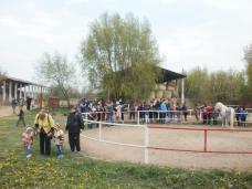 copii-din-județul-Constanța-au-vizitat-Herghelia-Mangalia-04