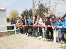 copii-din-județul-Constanța-au-vizitat-Herghelia-Mangalia-06