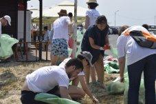 Mangalia campanie de igienizare pe plajă-12