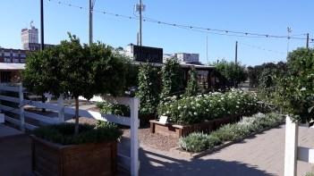 Magnolia Market Silos Waco Tx USA (11)
