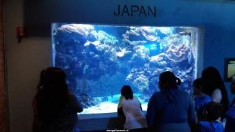 Dallas_World_Aquarium_MN (35)