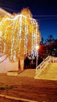 Mangalia în luminile Sărbătorilor de Iarnă - foto Elena Stroe-13