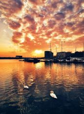 vlad eftenie - breaking morning - Sunrise swans Constanta