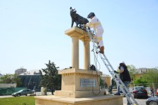 Lupa Capitolina Constanța - Romulus și Remus sunt împreună din nou4