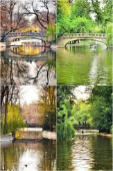 Vlad Eftenie - Cișmigiu Gardens