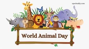 4-octombrie-2020-ziua-mondiala-a-animalelor