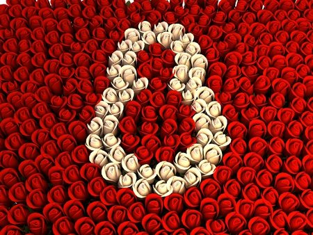 8-martie-trandafiri