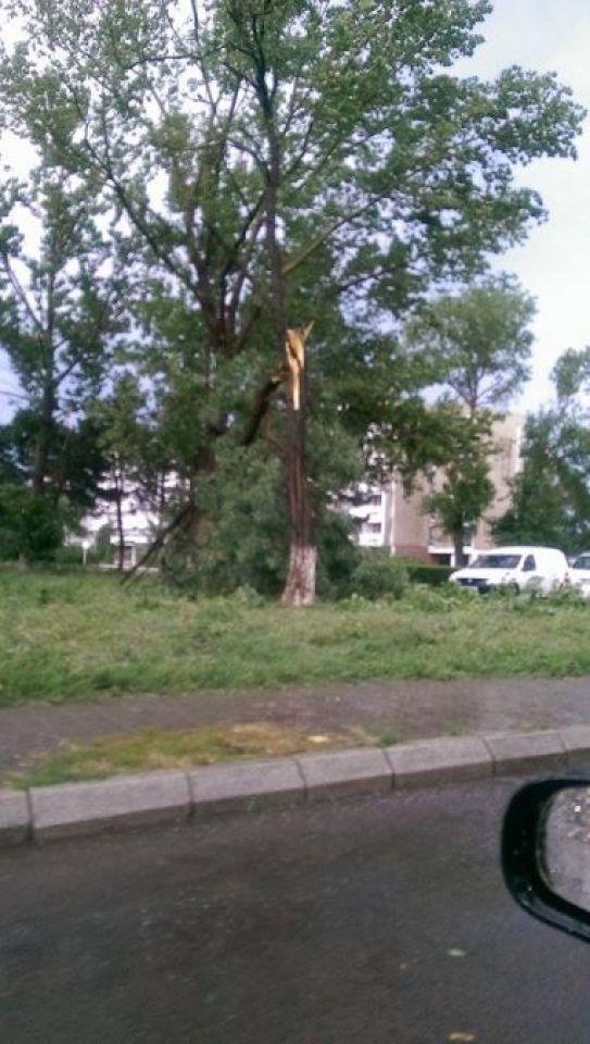 ravagii-furtuna-mangalia-11-07-2014-foto-Catalin-Coches-01