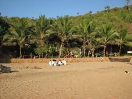 Om_beach_Gokarna12