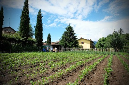 recensione trattoria Visconti - Ambivere