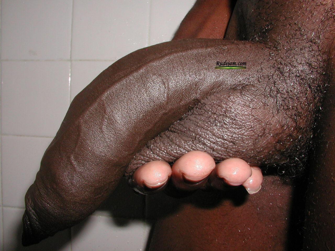 African black cut dicks and cocks gay men 6