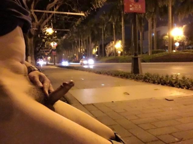 Hombres desnudos se toman las calles foto 3