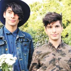Youtubers arman polémica boda gay