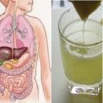 Remova Todas as toxinas do corpo em apenas 3 dias! Este método também previne o câncer, remove o excesso de água e gordura! Veja!