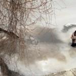 Homem vê cachorro aterrorizado preso em águas congeladas, arrisca sua vida e faz o resgate