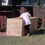 Menina de 2 anos compra sofá no valor de R$1.600,00 sem querer pelo celular da mãe