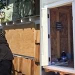 Homem constrói pequena casa para uma mulher moradora de rua do seu bairro