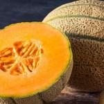 10 excelentes motivos para consumir mais melão