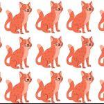 Consegue encontrar o gato diferente na imagem? Poucas pessoas conseguiram resolver este desafio visual.