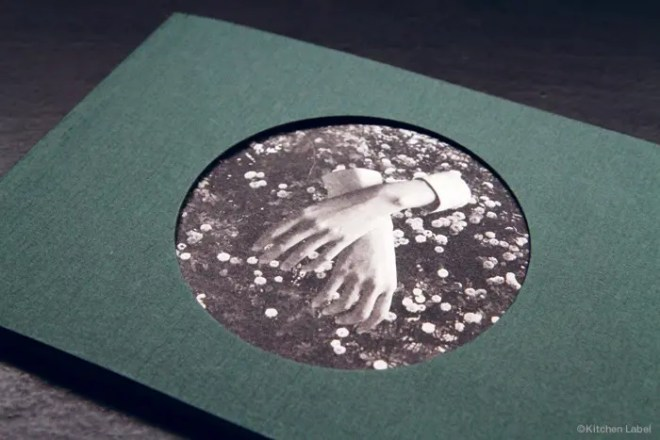 Kichen Label ASPIDISTRAFLY「A LITTLE FABLE」