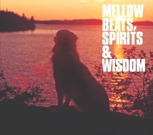 お洒落メロウHIPHOPコンピ『Mellow Beats, Spirits & Wisdom』(2008年作品)