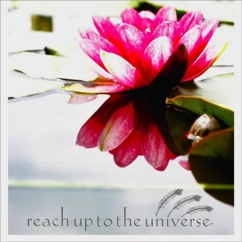 チェロが印象的な邦エモバンドreach up to the universe『EP』(2006年作品)
