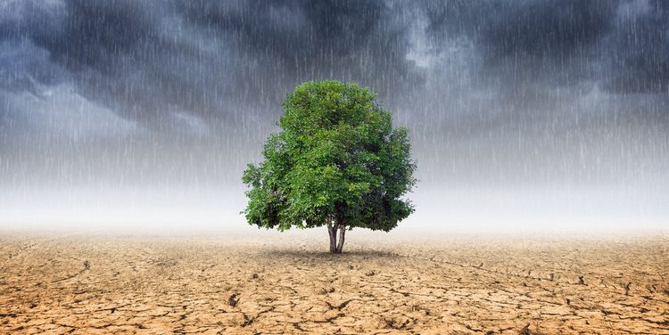 IMF warns equity investors over climate risk