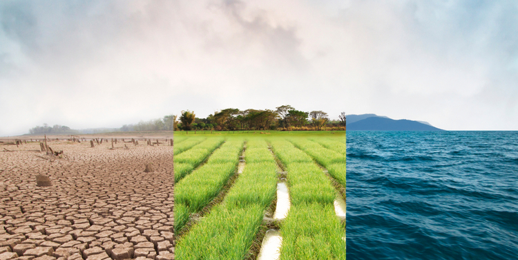 Investors urge companies to account for climate-related risks