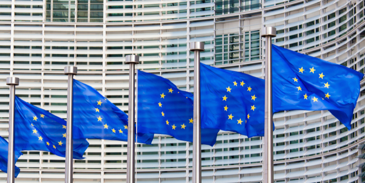 The EU Sustainable Finance Platform: Where are the owners?