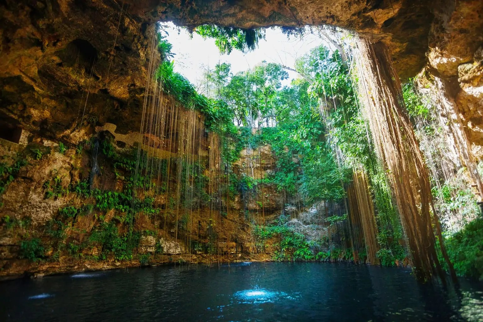 natuurlijke-zwembaden8
