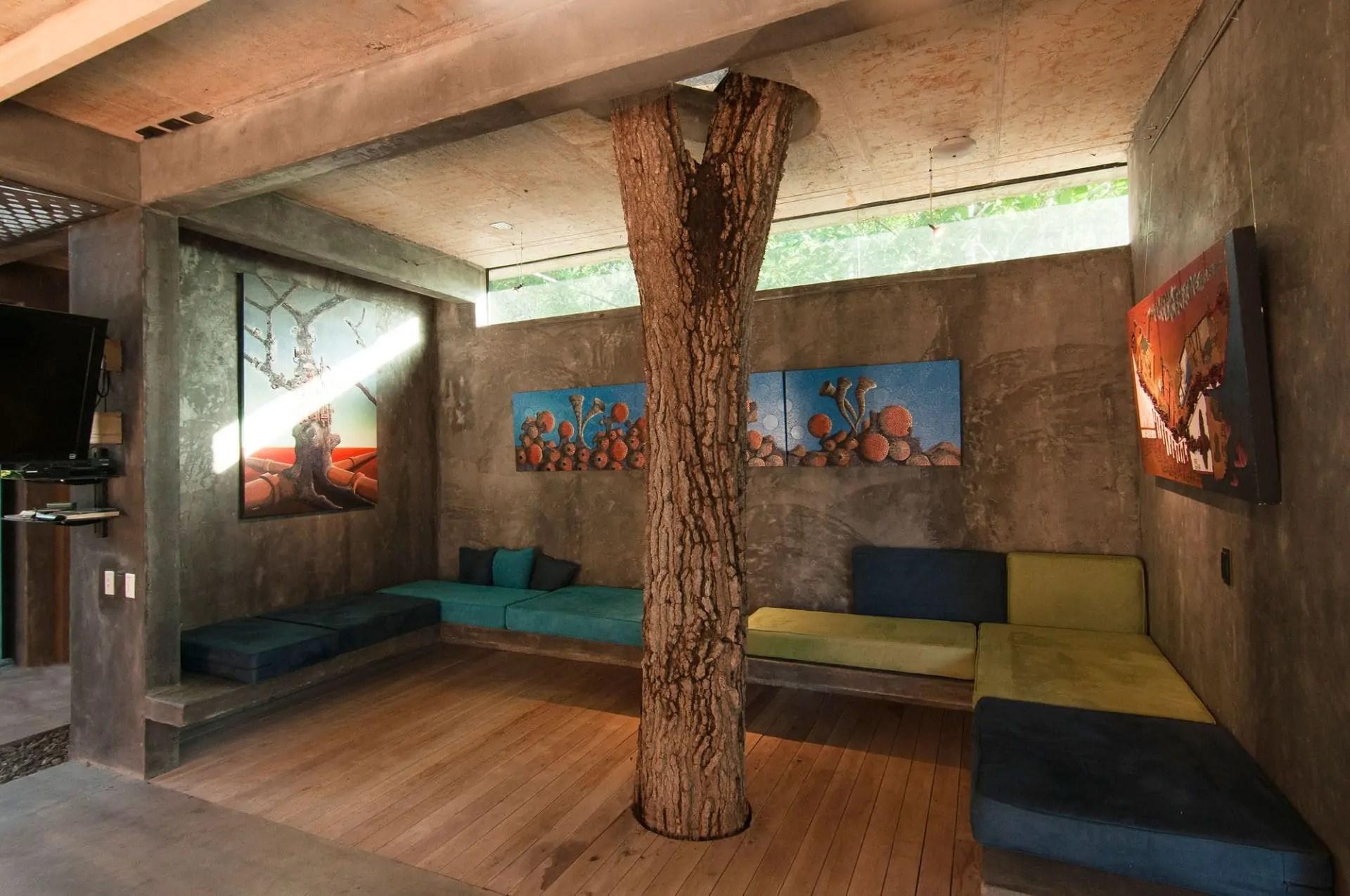 tree-house-costa-rica9