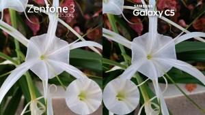 Asus Zenfone 3 vs Samsung Galaxy C5 camera Review comparison 2