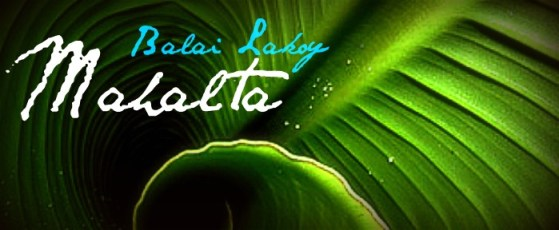 balai-lakoy-mahalta-spa-quezon-city-massage-philipines