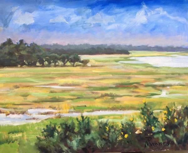 Marsh Transition