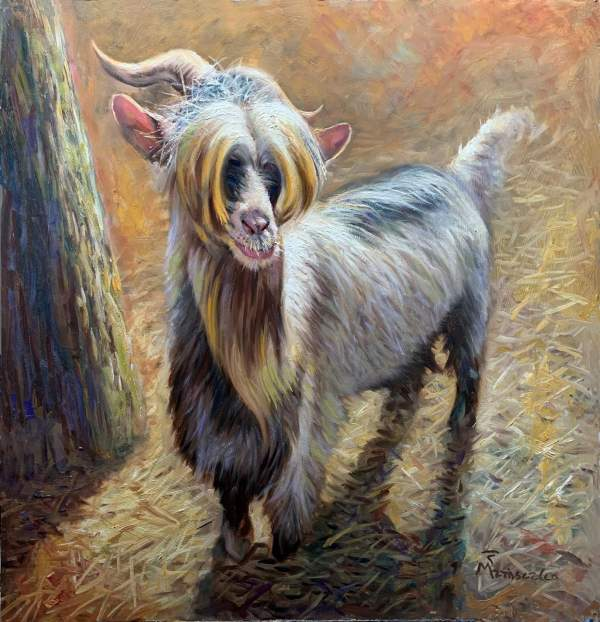 The Ugly Goat
