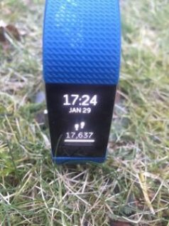 Fitbit Charge 2 - Stappen