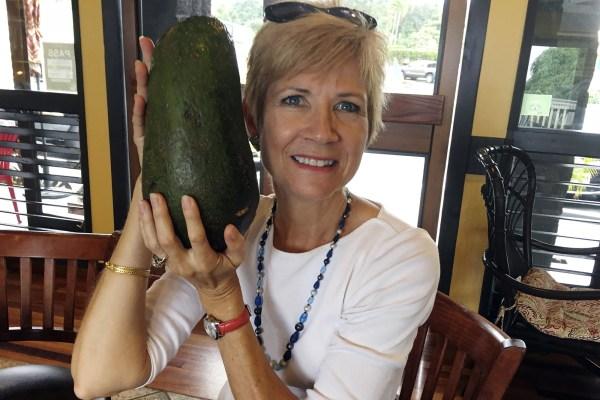 Grootste avocado ooit