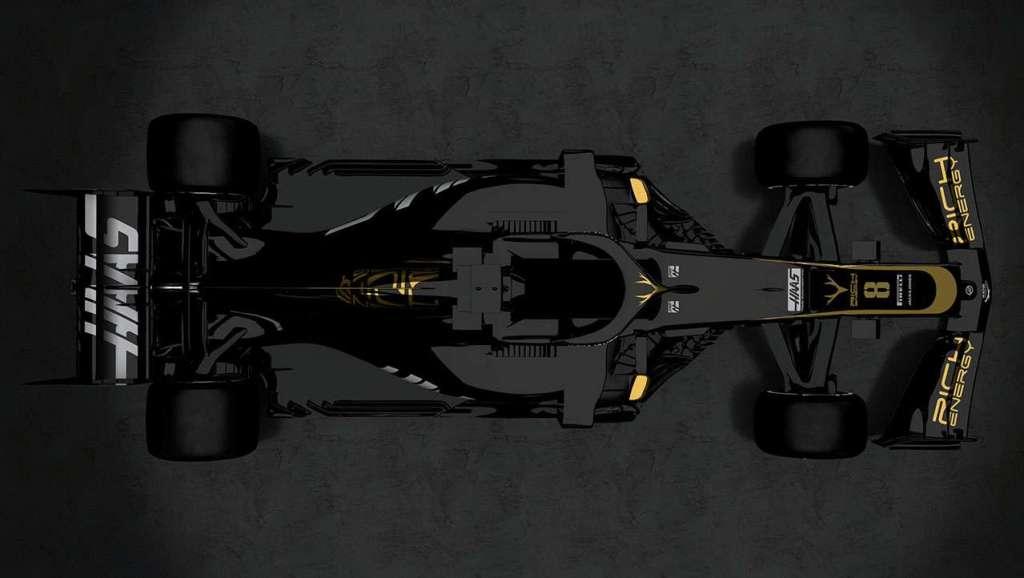 f1 auto Haas 2019 bovenaanzicht