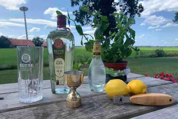 Gin Tonic Rutte