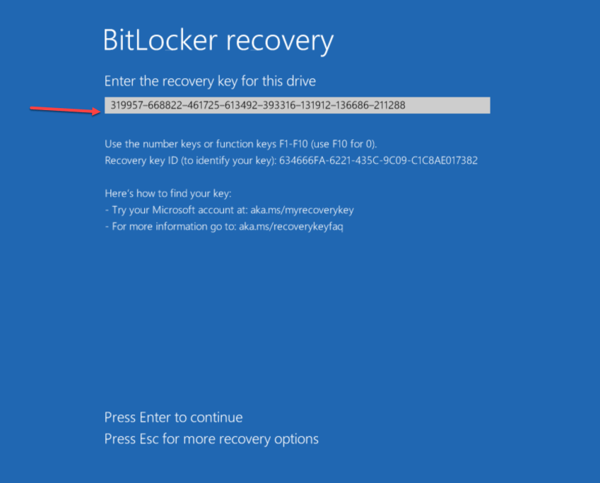 Enter the recovery key for this drive