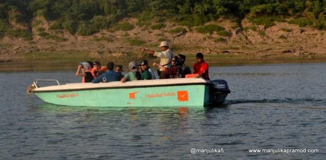 Chambal Boat Safari, Uttar Pradesh, Chambal River at the confluence of three states