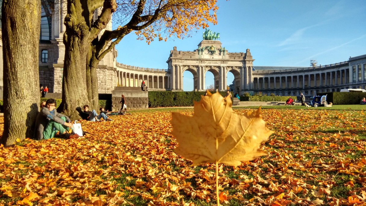 Travel blogger, Europe, A trip to Belgium, Autumn