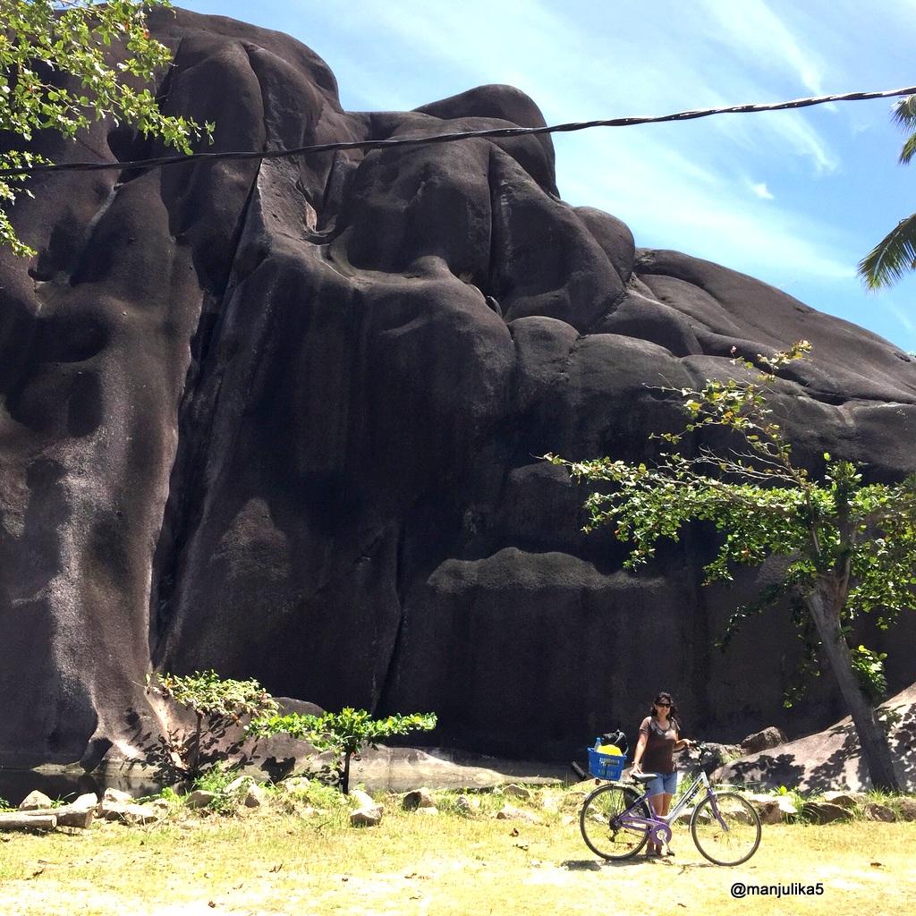 Park in La Digue Island has a giant rock