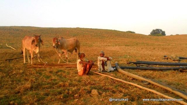 Ravines of Chambal Valley, Uttar Pradesh Tourism, Bandit Queen of Chambal