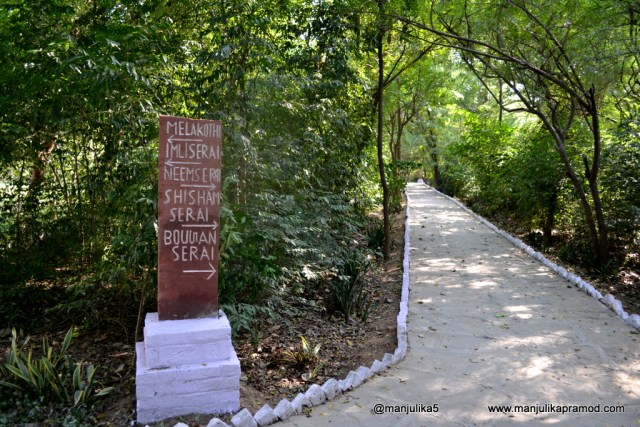 The rooms named after the birds- Chambal Safari Lodge