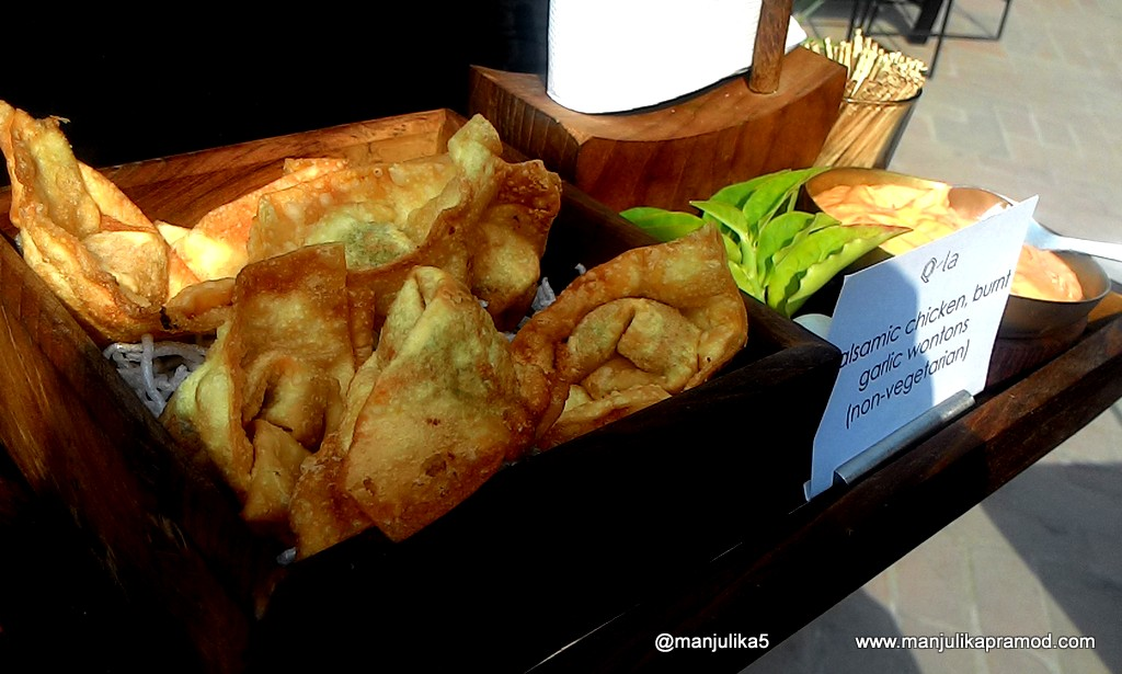 Chicken-Wantons-at-Qila-New-Delhi