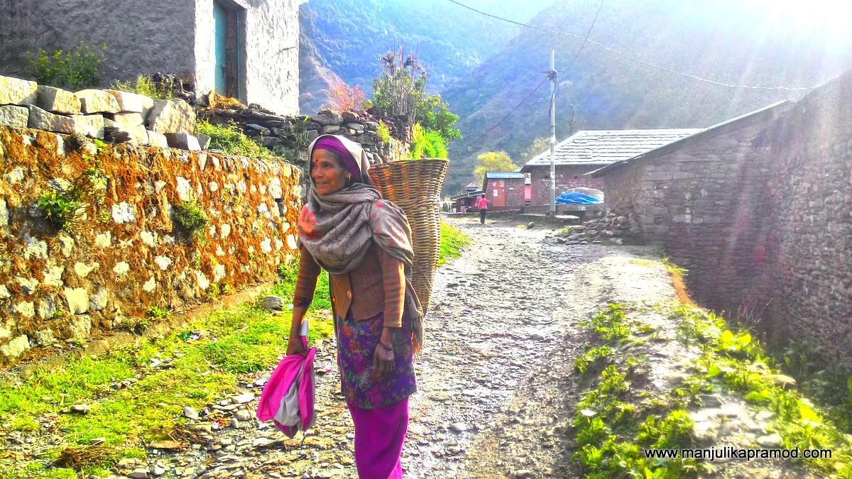 pristine village, Gunehar, in Kangra Valley, HP.